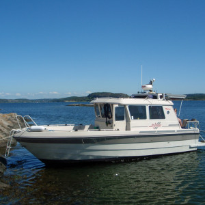 Minor 28 Viking med Hyundai SeasAll D170P med ZF backslag - Diesel Power AB